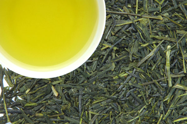 Sencha arbata